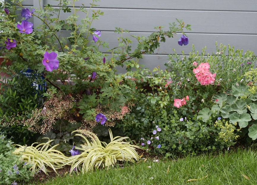 Front yard flower bed ideas photograph bed ideas designs f for Front yard flower bed designs